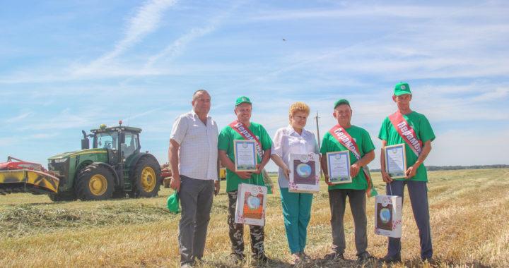 Определены лидеры на заготовке кормов по итогам первого укоса