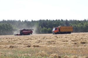 Зерновые рейсы Игоря Романюка