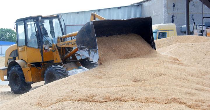 План продажи зерна в Каменецком районе выполнен