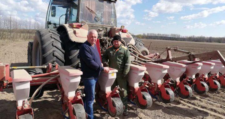 В «Видомлянском» отдают предпочтение зернобобовым в чистом виде