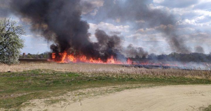 Серьезный ущерб Каменецкому району нанесли пожары