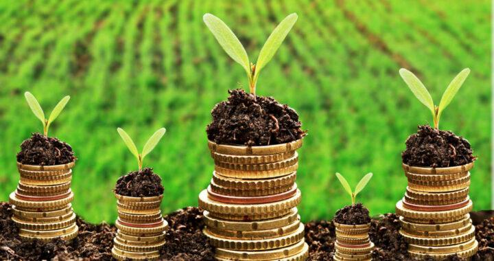 Налог на землю. Что нужно знать?