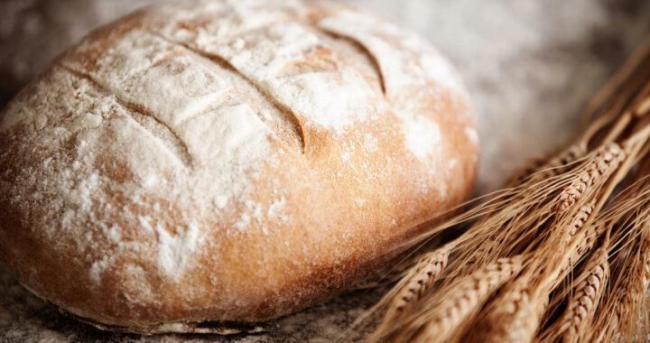 Камянецкі хлебазавод прадставіў новую прадукцыю