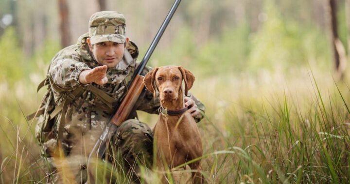 Новые правила охоты в Беларуси: что изменилось?