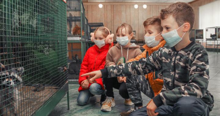 В Каменецком РДК работает выставка пушистых животных
