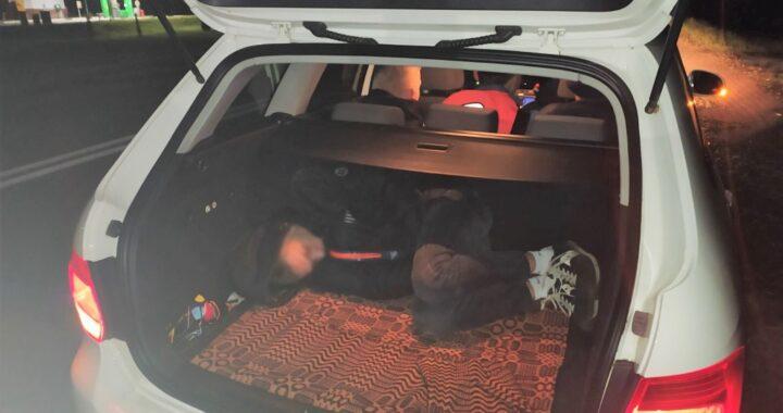В Каменецком районе ГАИ обнаружила нетрезвого пассажира в багажнике