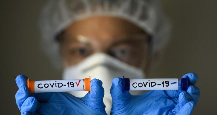 Платный тест на коронавирус можно сделать в Каменецкой ЦРБ и в Высоком
