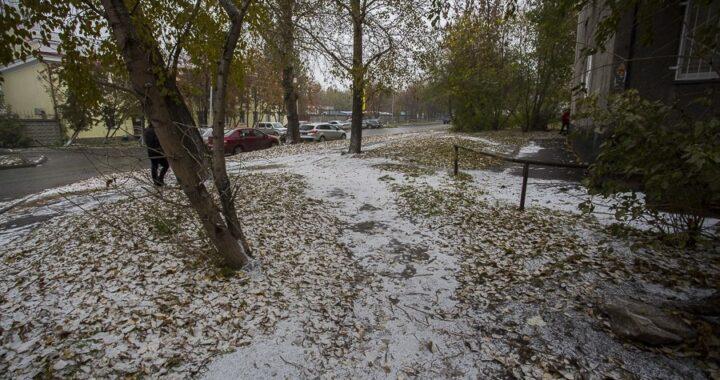 Потеплеет. Погода в Каменце и Высоком на неделю 14-20 декабря