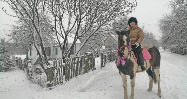 Вместо троллейбуса — конь. Горожанка вернулась из Москвы и нашла счастье в Пясках