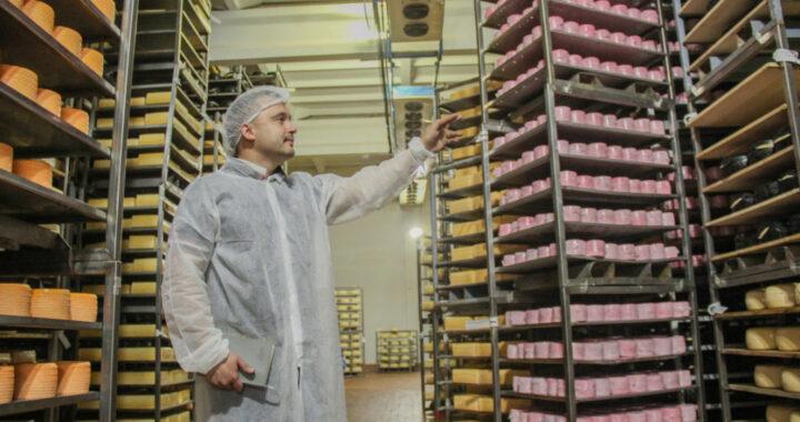 В Высоком выпускают линию элитных сыров «Сарматия»