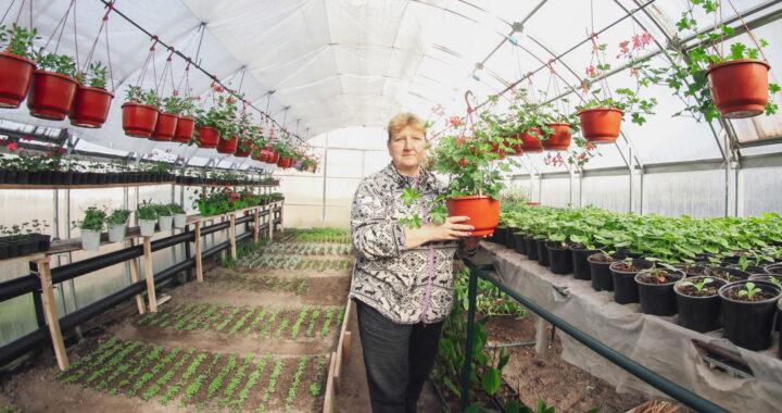 Посмотрели, как Каменецкое ЖКХ готовит цветочную рассаду