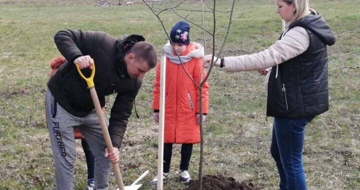 «Мама, папа, я и… клен». Молодые семьи посадили в парке деревья