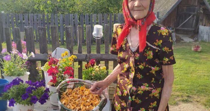 В Маковище дары леса приносят к заготовителям грибники со стажем