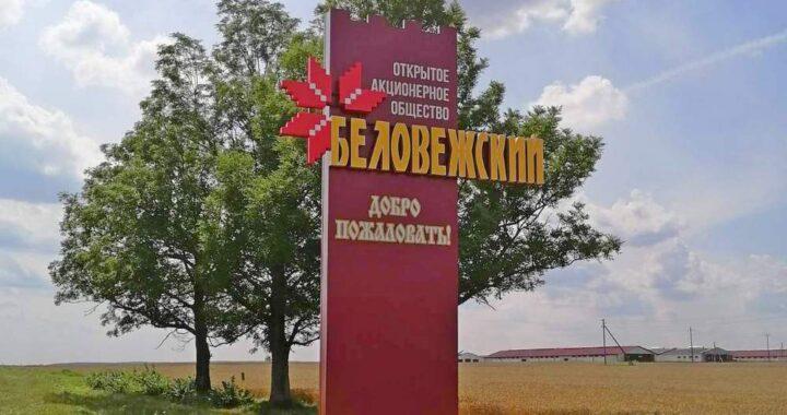Фотофакт: В «Беловежском» — новая приветственная стела у деревни Верховичи