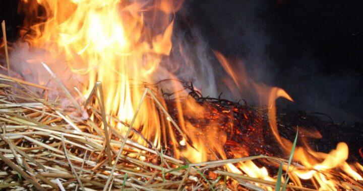 В Каменецком районе за 7 месяцев зарегистрированы 20 пожаров