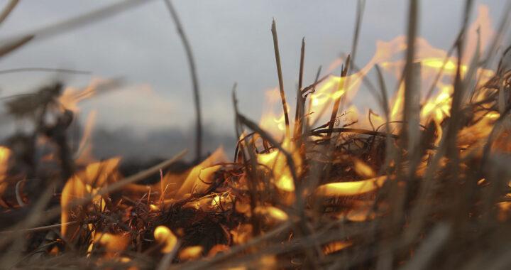В Каменецком районе за 8 месяцев зарегистрированы 22 пожара