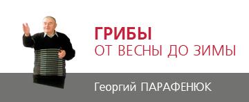 Георгий Парафенюк. Грибы от весны до зимы